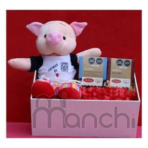 chanchito de peluche y chocolates